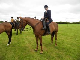 Leaping Horn in Side Saddle   Helen Hollick   Philippa Jane Keyworth