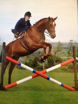 Jumping Riding Aside or Side Saddle | Helen Rollick | Philippa Jane Keyworth