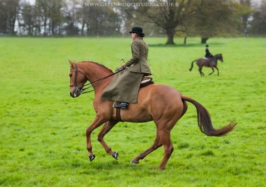 History of Side Saddle Riding | Helen Hollick | Philippa Jane Keyworth